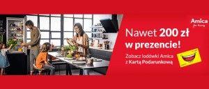 /rtv-euro-agd-promocja-na-lodowki-amica-201907